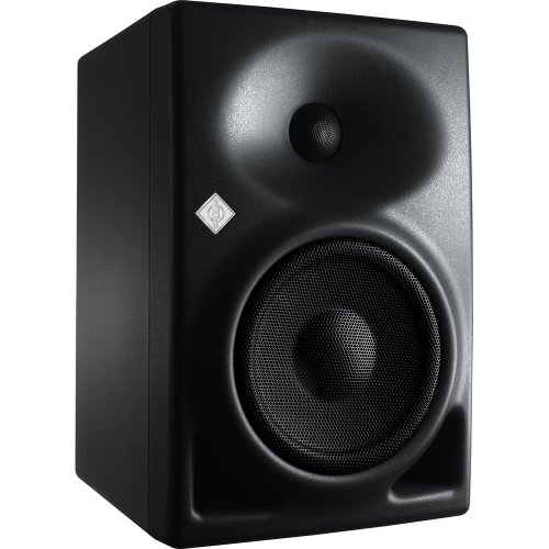 Waveguide Elliptical (Neumann KH 120 A - Active Studio Monitor)