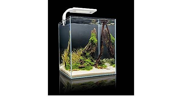 Nanoacuario en forma de cubo para gambas Shrimp Set Smart 2 de Aquael (de 10, 19 y 30 litros): Amazon.es: Productos para mascotas