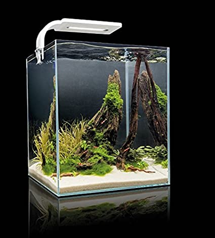 Nanoacuario en forma de cubo para gambas Shrimp Set Smart 2 de Aquael (de 10