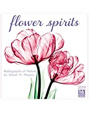 2019 Flower Spirits — Radiographs of Nature by Steven N. Meyers 16-Month Wall Calendar: by Sellers Publishing, 12x12 (CA-0388)