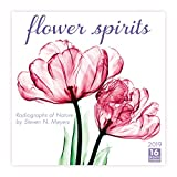 Flower Spirits 2019 Wall Calendar