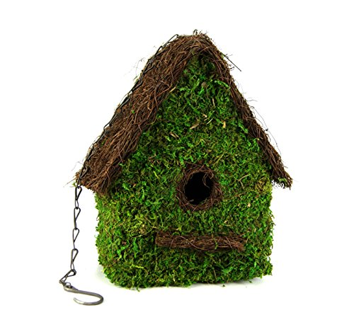 Cheap Galapagos Woven Moss Maison Birdhouse with Chain