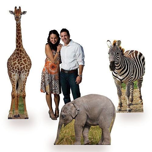 Safari Animal Jungle Party Cardboard Cutout Props, Set of 3 (Standee Out Cut)