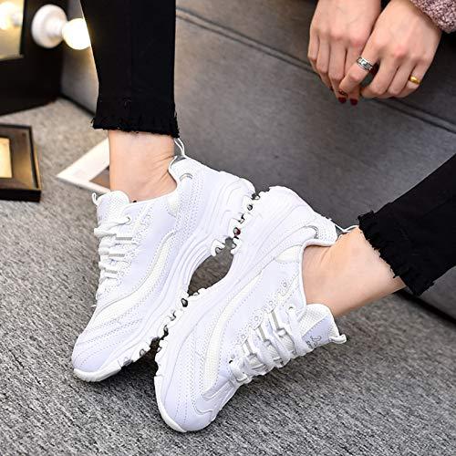 Damenschuhe Reines Freien Mesh QLX Weiß Schuhe Im Turnschuhe Leinwand Paar Herren Student Schuhe Paar Xp6qpZ