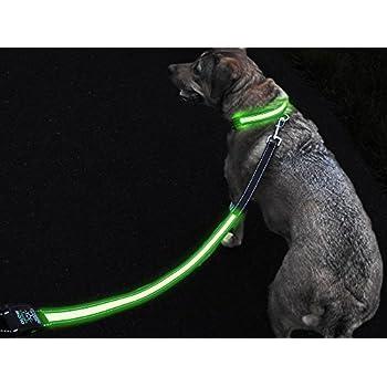 Amazon Com Led Light Up Dog Leash Glowleash By