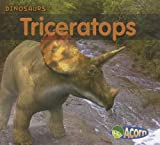 Triceratops, Daniel Nunn, 1403494452