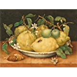 Canvas Prints Of Oil Painting ' Still Life With Bowl Of Citrons, Late 1640' s By Giovanna Garzoni' 24 x 32 inch / 61 x 80 cm, Polyster Canvas Is For Gifts And Foyer, Hallway And Living Room Decoration