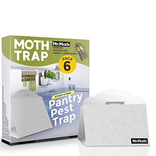 Mr. MOTH Pantry Moth Trap 6-Pack - Cupboard Moth Trap - Prime Safe Non-Toxic Eco-Friendly Pheromone Moth Traps for Kitchen - Pesticides & Insecticides Free