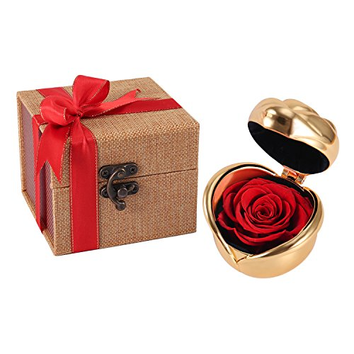 Red Rose, Handmade Preserved Rose Present, Exquisite Fresh Roses Upscale Immortal Flowers Best Gift for Female Birthday, Anniversary, Valentine's Day, Christmas (Golden-Red ()