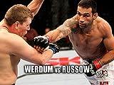 Fabricio Werdum vs. Mike Russow UFC 147