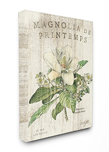 (Stupell Industries French Magnolias In Spring Stretched Canvas Wall Art, Proudly Made in USA)