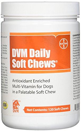Bayer Animal Health DVM Daily Soft Chews (120 count) by Bayer Animal Health