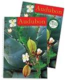 Audubon Engagement Calendar 2011