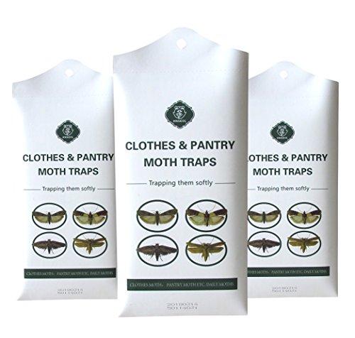 MOTHS TRAPS Dual Premium Pheromones Clothes and Pantry Safe for Closet Clothing & Carpet Kitchen | Warehouse.(3 Packs of 2 Traps)