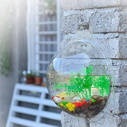 Wrisky NEW Home Decoration Pot Wall Hanging Mount Bubble Aquarium Bowl Fish Tank 3 Size (Transparent, - Online Clearance Outlet