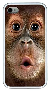 Big Face Baby Orangutan TPU Silicone Case Cover for iPhone 4/4S White