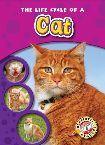 The Life Cycle of a Cat (Blastoff! Readers: Life Cycles) (Blastoff Readers. Level 3) by Bellwether Media
