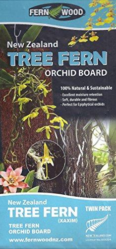 Fern Wood New Zealand Tree Fern Orchid Board Panel 12x6x1 Twin Pack