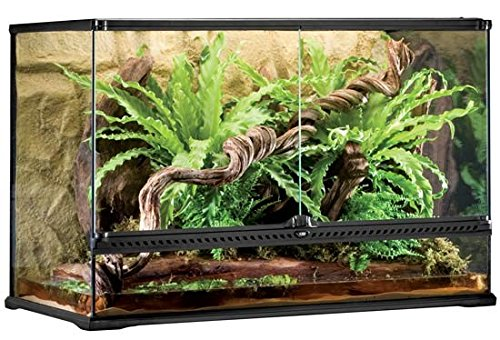 Exo-Terra Glass Terrarium, 36 by 18 by 24-Inch