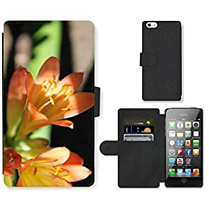 PU Cuir Flip Etui Portefeuille Coque Case Cover véritable Leather Housse Couvrir Couverture Fermeture Magnetique Silicone Support Carte Slots Protection Shell // M00290202 Clivias flor de la planta de Flora // Apple iPhone 5 5S 5G SE