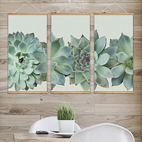 3 Panel Hanging Poster with Wood Frames Closeup of Succulent Plants Decorative x 3 Panels