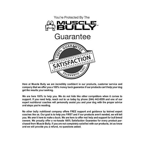 Vita Bully Vitamins for Bully Breeds: Pit Bulls, American Bullies, Exotic Bullies, Bulldogs, Pocket Bullies, Made in The USA. (60 Vitamins) 5