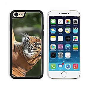 Tiger Predator Legs Lie Face Big Cat Apple iPhone 6 TPU Snap Cover Premium Aluminium Design Back Plate Case Customized Made to Order Support Ready Liil iPhone_6 Professional Case Touch Accessories Graphic Covers Designed Model Sleeve HD Template Wallpaper