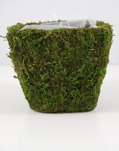 Moss Covered Pot w/Liner 4 inches (Moss Covered Pot)