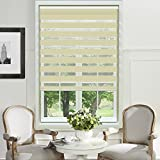 PASSENGER PIGEON Adhesive Window Blinds, 56 W x