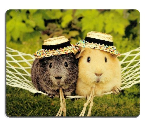 guinea-pig-cavy-rodent-pets-animals-mouse-pads-customized-made-to-order-support-ready-9-7-8-inch-250
