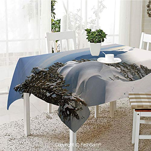 AmaUncle Party Decorations Tablecloth Pacific Ocean Meets The Mountains Vancouver British Columbia Canada Wilderness Scenery Decorative Table Protectors for Family Dinners (W55 xL72) -
