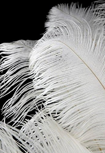 Richland White Ostrich Feathers Drabs 17-20'' 1/4lb