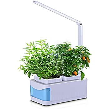 Amazon indoor hydroponic herb garden kit lamp desk lamp for wpky indoor hydroponic herb garden kit smart garden growing system with dimmable led grow light multifunction desk lamp seeds not included workwithnaturefo