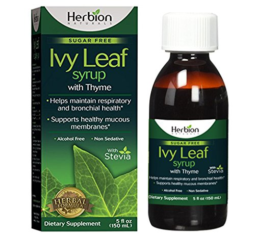 Herbion Naturals Ivy Leaf Syrup with Thyme, 5 fl oz- Helps Maintain Respiratory and Bronchial Health, Supports Healthy Mucous Membranes, Effective for Adults and Children by Herbion Naturals