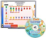 NewPath Learning Chromosomes, Genes, and DNA CD-ROM, Single-user license