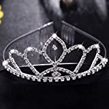 Kyerivs Bride to be Decoration Set for Bachelorette Party Supply,Rhinestone Tiara,Bridal Wedding Veil,Bride to Be Sash,Rosette Badge and Garter for Bridal Shower Decorations