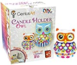 #4: Arts and Crafts - DIY Owl Candle Holder Painting
