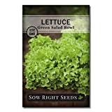 Sow Right Seeds - Inside Garden Seed Collection for Planting - Non-GMO Heirloom Carrot, Lettuce, Radish, Arugula, Basil, and Bunching Onions Seeds to Grow in an Apartment or Indoors
