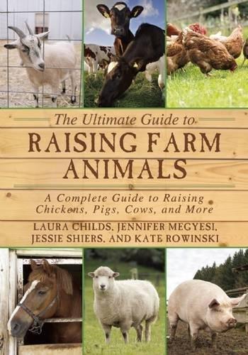 Raising Pigs - 8