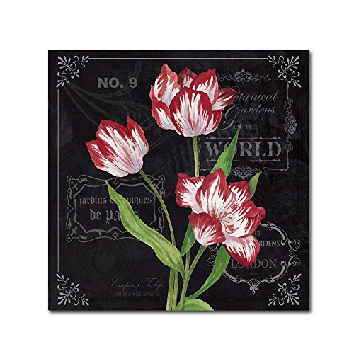 Tulips by Fiona Stokes-Gilbert - flower Canvas Wall Art