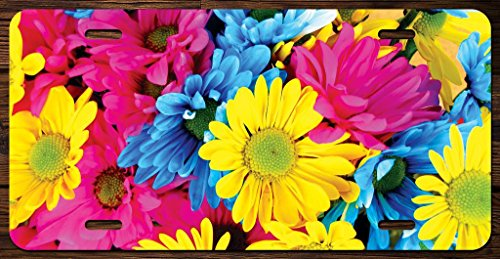 Crazy Colorful Daisies Vanity Front License Plate Tag Printed Full Color KCFP054 ()
