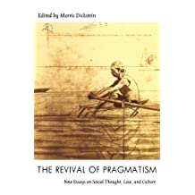 The Revival of Pragmatism: New Essays on Social Thought, Law, and Culture