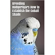 Breeding Budgerigars How to Establish the Cobalt Shade