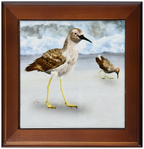 3dRose ft_50431_1 Least Sandpiper Birds on a Beach Framed Tile, 8 by 8-Inch