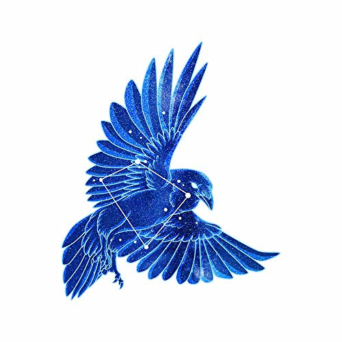 Raven Decal - 4