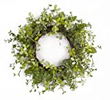 Melrose Pack of 2 Decorative Spring Garden Green Artificial Foliage Wreath 22""