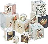 Best Kids Preferred Baby Books Sets - Kids Preferred 83000 the Wonderful Things Nesting Blocks Review