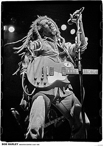 Bob Marley Brighton 1980 Music Poster 23.5x33