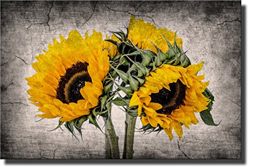 Picture Sunflower (Sunflower Picture Made on Stretched Canvas, Wall Art Decor Ready to Hang!.)