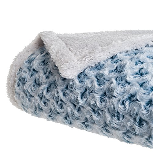 Lavish Home Plush Flower Fleece Sherpa Throw Blanket, Blue (Sherpa House)